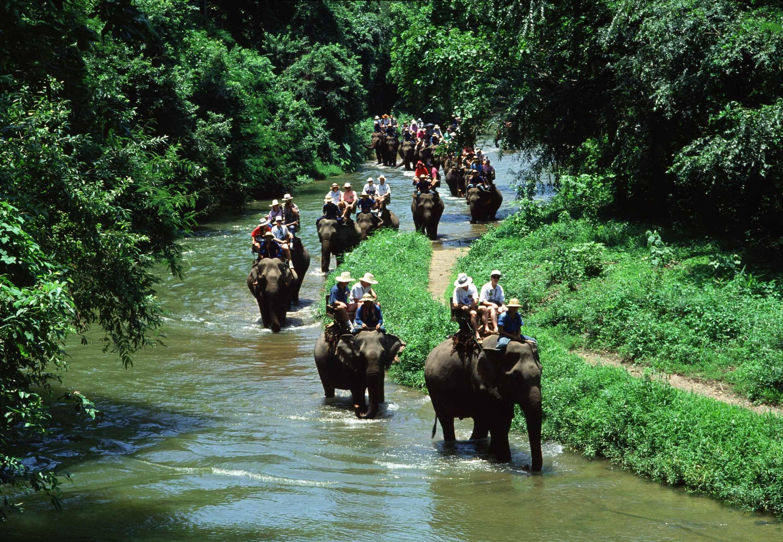 Ден 5:О. БАЛИ – Денпасар + Разходка със слонове|Трансфер до хотел в района Нуса Дуа