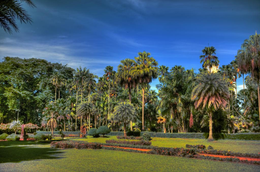 ДЕН 3:ДЖАКАРТА – Туристическа обиколка на града/Посещение на ботаническата градина в Богор